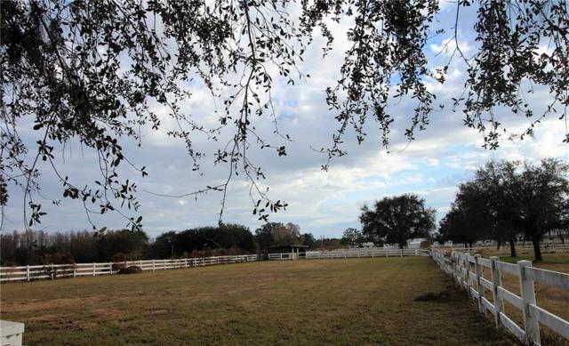 Huckavalle Lot 1, Odessa, FL 33556 (MLS #H2204533) :: Team Bohannon Keller Williams, Tampa Properties