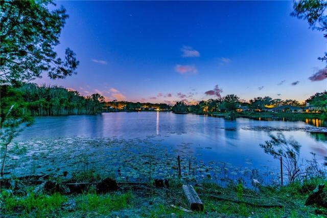 Address Not Published, Lutz, FL 33549 (MLS #H2400093) :: The Duncan Duo Team