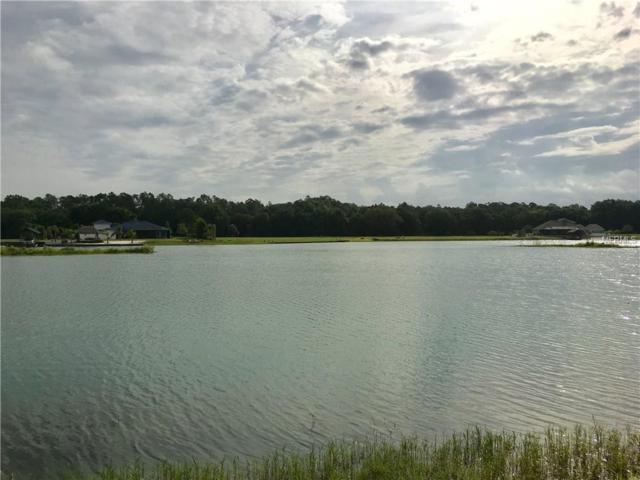 24023 Hideout Trail, Land O Lakes, FL 34639 (MLS #H2400158) :: Delgado Home Team at Keller Williams