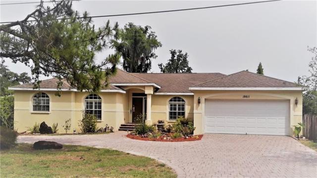 18611 Lakeshore Drive, Lutz, FL 33549 (MLS #H2400170) :: The Duncan Duo Team