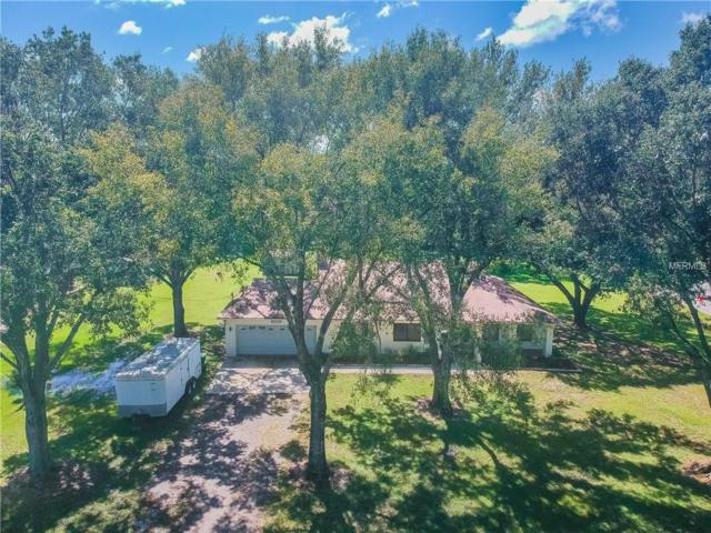17150 Driftwood Lane, Lutz, FL 33558 (MLS #H2400850) :: The Duncan Duo Team