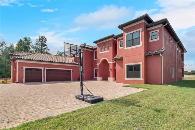 2490 Zuni Road, Saint Cloud, FL 34771 (MLS #J903268) :: Cartwright Realty