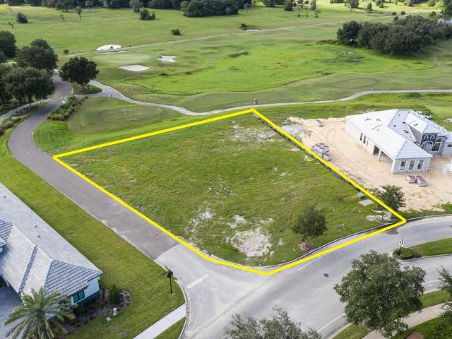 31972 Red Tail Boulevard, Sorrento, FL 32776 (MLS #J918268) :: Bob Paulson with Vylla Home