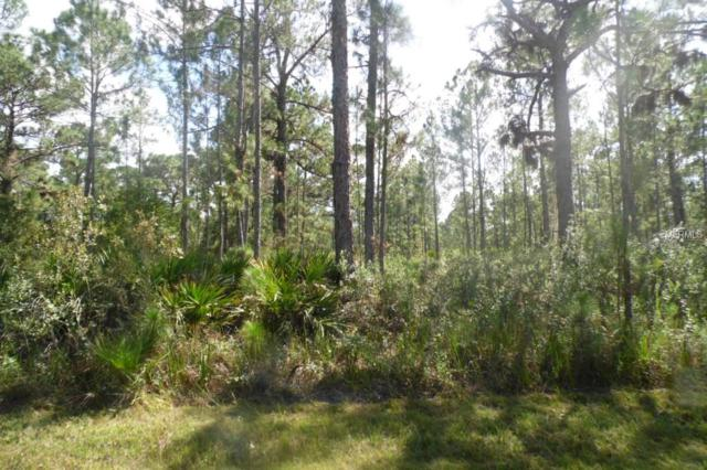 1009 Calliandra Drive, Indian Lake Estates, FL 33855 (MLS #K4700143) :: The Duncan Duo Team