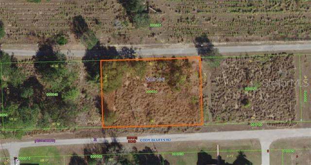 1005 Cody Bluffs Road, Babson Park, FL 33827 (MLS #K4900159) :: Mark and Joni Coulter | Better Homes and Gardens
