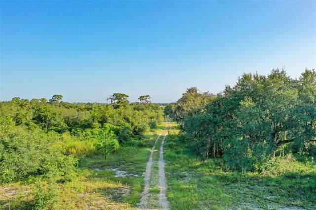 3736 Alturas Babson Park Cutoff Road, Lake Wales, FL 33859 (MLS #K4901472) :: Team Bohannon