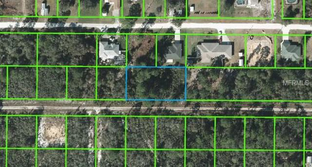 221 Caspian Tern Avenue, Sebring, FL 33870 (MLS #L4715015) :: Florida Real Estate Sellers at Keller Williams Realty