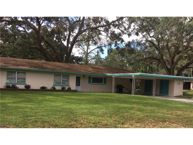 2619 Martin Avenue, Lakeland, FL 33803 (MLS #L4723642) :: Gate Arty & the Group - Keller Williams Realty