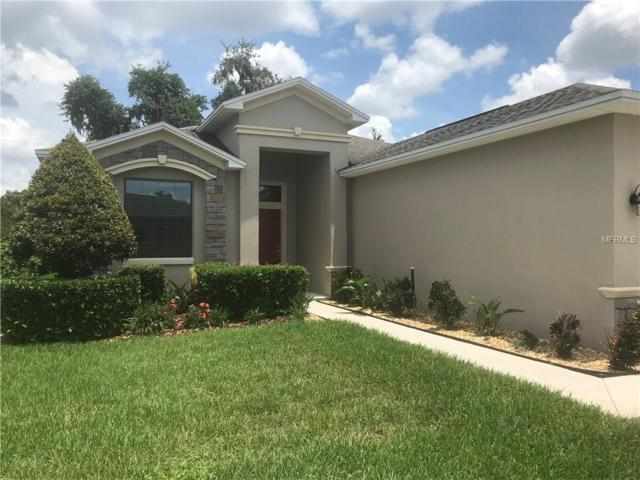 6234 Silver Leaf Lane, Lakeland, FL 33813 (MLS #L4726204) :: Griffin Group