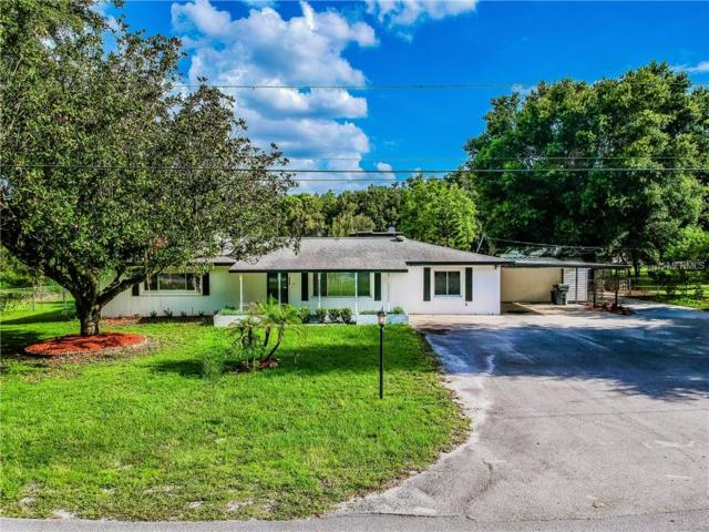 828 Patricia Place, Lakeland, FL 33809 (MLS #L4902214) :: Mark and Joni Coulter | Better Homes and Gardens