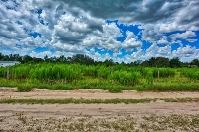 Farrer Road, Frostproof, FL 33843 (MLS #L4905334) :: The Duncan Duo Team