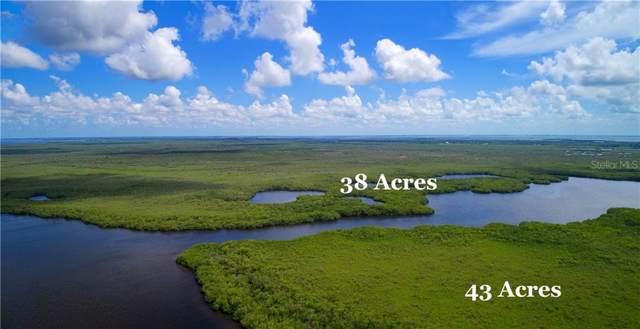 Access Undetermined, Bokeelia, FL 33922 (MLS #L4909456) :: The Duncan Duo Team