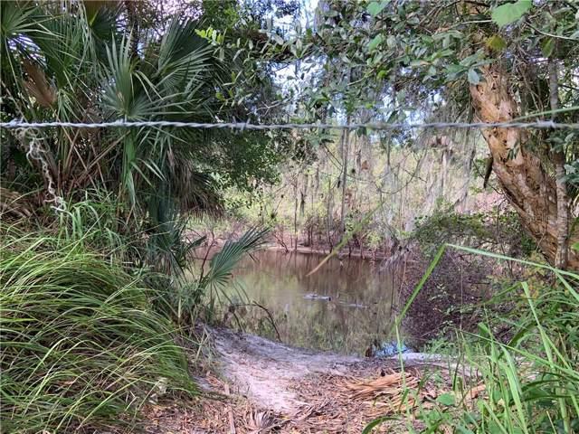 321 King Road, Wauchula, FL 33873 (MLS #L4911032) :: Cartwright Realty