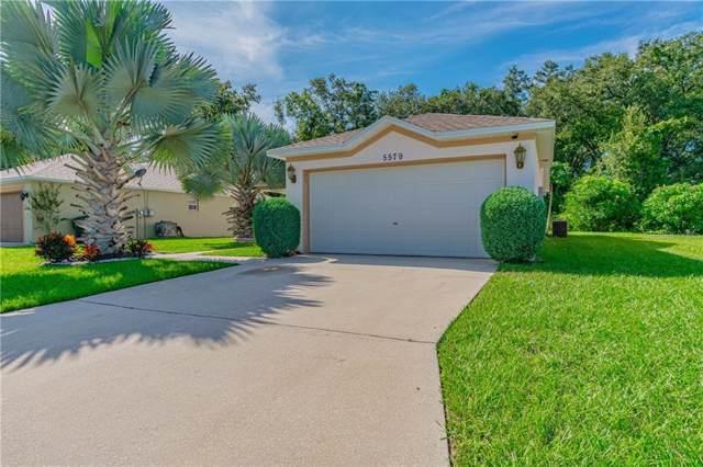 5579 Starling Loop, Lakeland, FL 33810 (MLS #L4911952) :: Gate Arty & the Group - Keller Williams Realty Smart