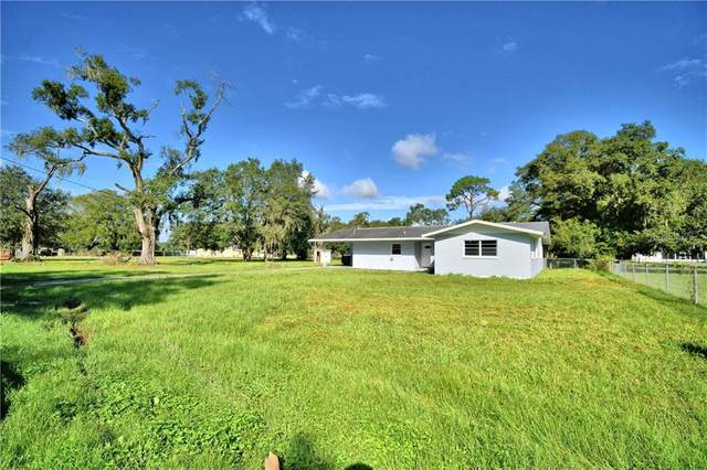 2927 Wiregrass Road, Lakeland, FL 33810 (MLS #L4919151) :: Carmena and Associates Realty Group