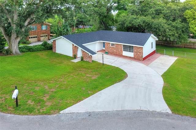 5313 Lisa Avenue, Lakeland, FL 33813 (MLS #L4923761) :: Zarghami Group