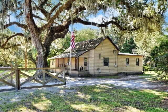 2630 Wiregrass Road, Lakeland, FL 33810 (MLS #L4924347) :: Vacasa Real Estate