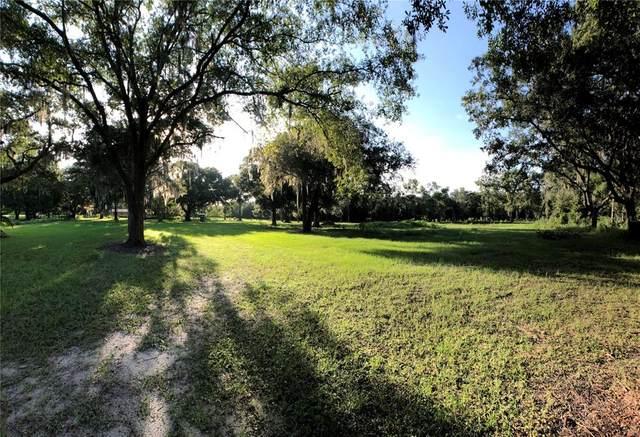 6011 Allen Lane, Lakeland, FL 33811 (MLS #L4924407) :: Rabell Realty Group