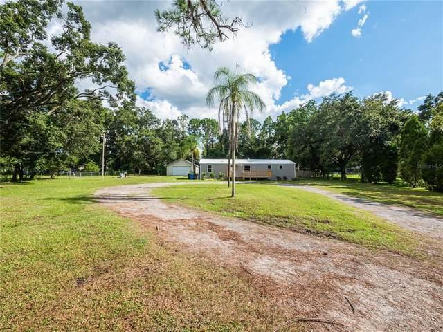 13051 Thonotosassa Road, Dover, FL 33527 (MLS #L4924678) :: Zarghami Group