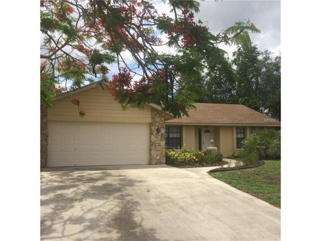 413 Bayview Avenue, Osprey, FL 34229 (MLS #N5911068) :: Medway Realty