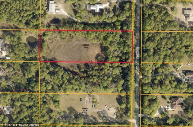 Ruff Street, North Port, FL 34291 (MLS #N5913358) :: Baird Realty Group