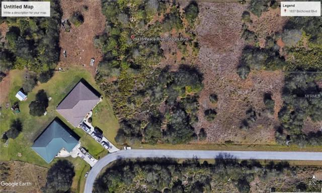 29435 Peace River Shores Boulevard, Punta Gorda, FL 33982 (MLS #N5916007) :: Griffin Group