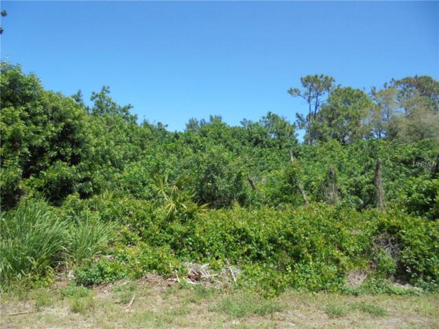 Duquesne Road, Venice, FL 34293 (MLS #N6100094) :: Medway Realty
