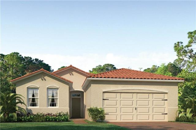 143 Ventosa Place, North Venice, FL 34275 (MLS #N6101680) :: The Duncan Duo Team