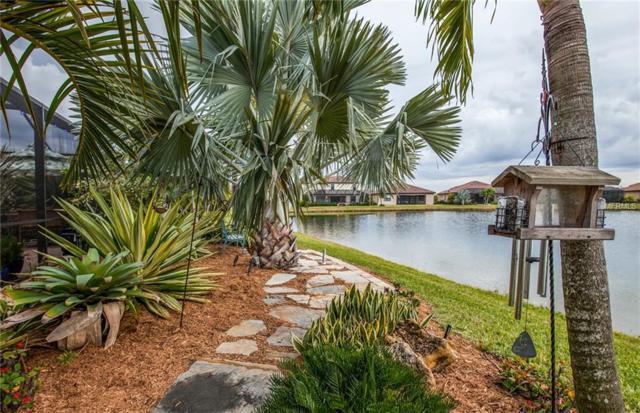 20330 Granlago Drive, Venice, FL 34293 (MLS #N6104008) :: Medway Realty