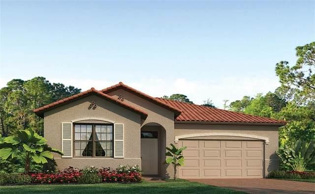 125 Vinadio Boulevard, North Venice, FL 34275 (MLS #N6112533) :: Pepine Realty