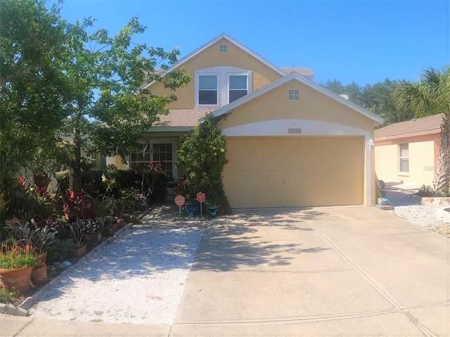 3539 Chinaberry Lane, Sarasota, FL 34235 (MLS #N6115212) :: Godwin Realty Group