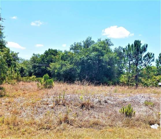 College Terrace, North Port, FL 34291 (MLS #N6115495) :: Armel Real Estate