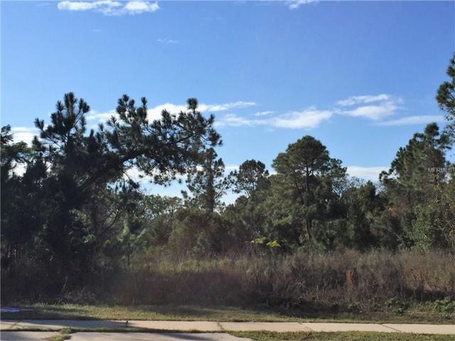 W Highbanks Road, Debary, FL 32713 (MLS #O5465698) :: G World Properties
