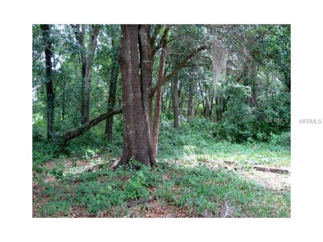2128 Supreme Court, Mount Dora, FL 32757 (MLS #O5480235) :: Baird Realty Group