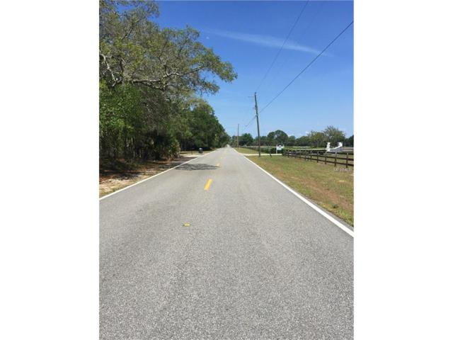 Old Mims Road, Geneva, FL 32732 (MLS #O5508350) :: RE/MAX Realtec Group