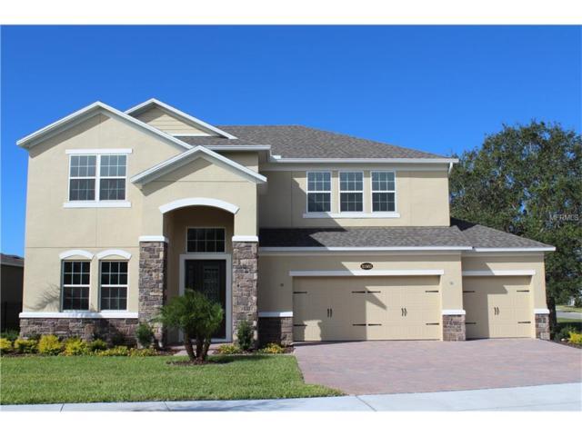 31931 Geoff Way, Sorrento, FL 32776 (MLS #O5515055) :: Team Virgadamo
