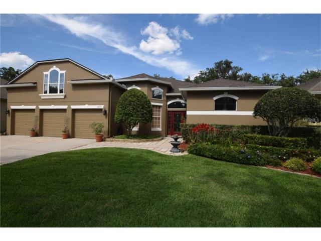 10231 Hart Branch Circle, Orlando, FL 32832 (MLS #O5515365) :: RE/MAX Realtec Group