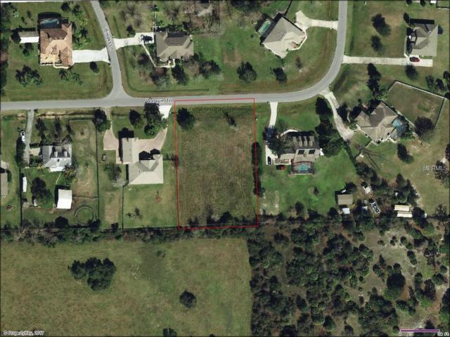 Wassum Trail, Chuluota, FL 32766 (MLS #O5515385) :: RE/MAX Innovation