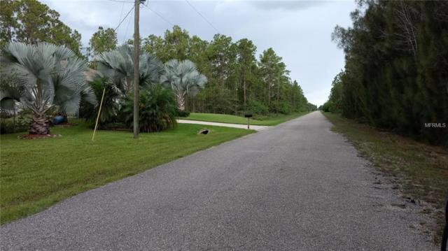 1313 Jefferson Avenue, Lehigh Acres, FL 33972 (MLS #O5521807) :: The Duncan Duo Team
