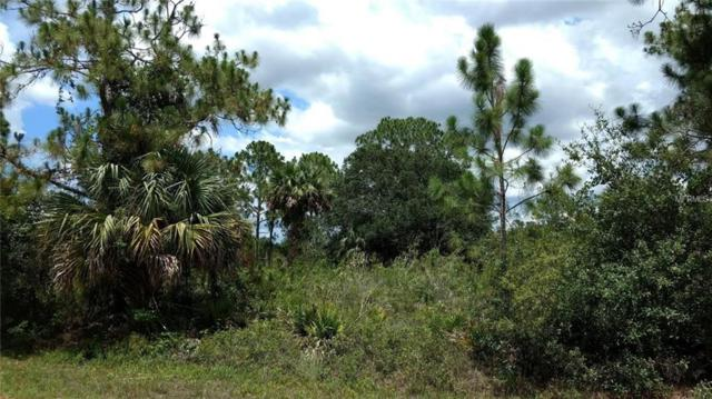 1410 Acacia Avenue, Lehigh Acres, FL 33972 (MLS #O5522417) :: The Duncan Duo Team