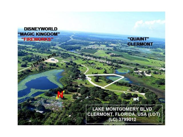 Lake Montgomery Boulevard, Clermont, FL 34715 (MLS #O5525704) :: Godwin Realty Group