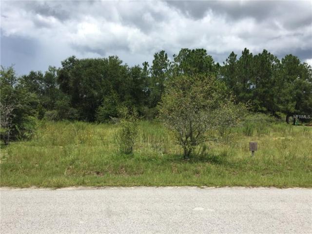 SE 59TH Place, Ocklawaha, FL 32179 (MLS #O5529976) :: Premium Properties Real Estate Services
