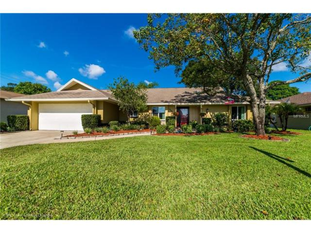 4642 Forrestal Avenue, Orlando, FL 32806 (MLS #O5531240) :: RE/MAX Realtec Group