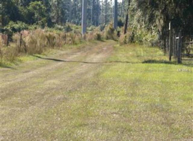 1290 Outback Road, Saint Cloud, FL 34771 (MLS #O5534120) :: The Duncan Duo Team