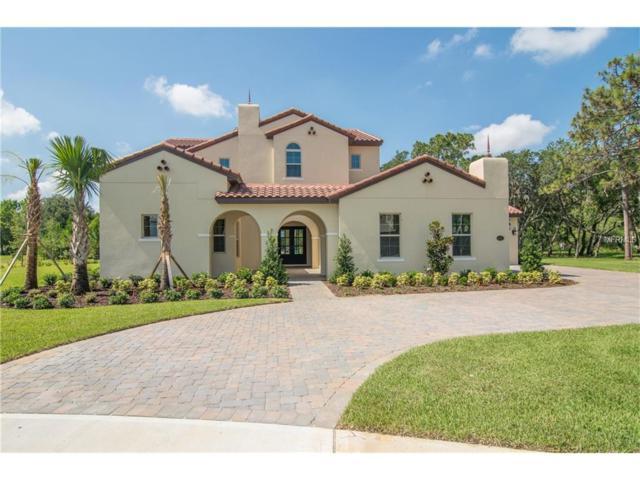 10024 Serene Waters Court, Orlando, FL 32836 (MLS #O5535229) :: G World Properties