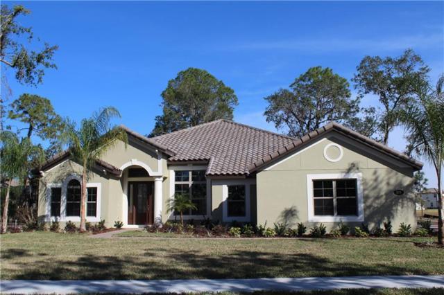 119 Rosa Bella View, Debary, FL 32713 (MLS #O5536104) :: The Lockhart Team