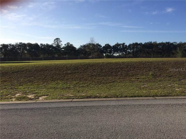 Weldon Drive, Eustis, FL 32726 (MLS #O5536755) :: Alpha Equity Team