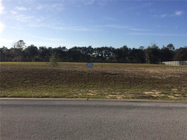 Weldon Drive, Eustis, FL 32726 (MLS #O5536777) :: Alpha Equity Team
