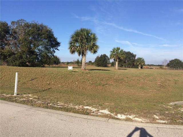Bee Meadow, Eustis, FL 32736 (MLS #O5536801) :: Heckler Realty