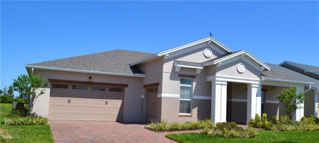 4919 Drawdy Court, Saint Cloud, FL 34772 (MLS #O5541819) :: The Duncan Duo Team